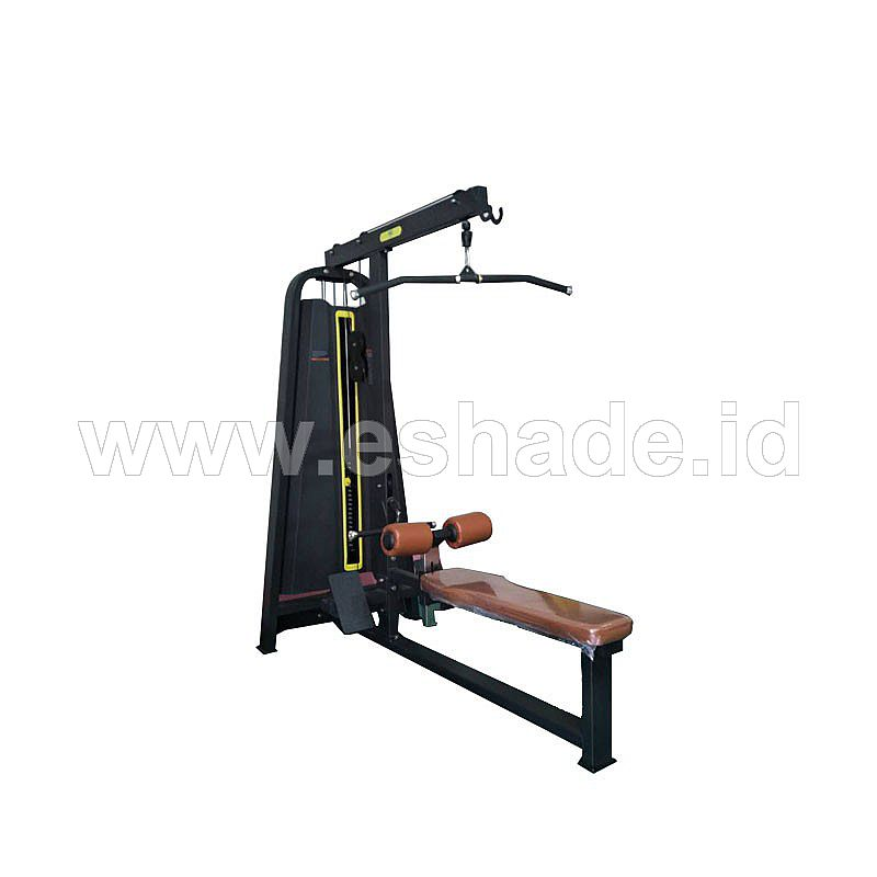 Lat Pull Down and Low Row HR-F1078